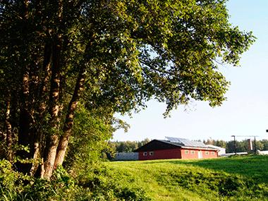 Sani - Camping Wangnitzsee